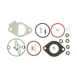 Kit carburateur Briggs Stratton 15,5 Intek OHV, Powerbuilt 15,5 - 4155 (Nikki)