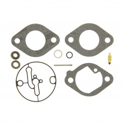 Kit carburateur Briggs Stratton Intek 16,0 - Intek 22,0 - Intek 7160 - 7180 - 7220