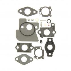 Kit joint carburateur Briggs Stratton 825 Series I/C, 875 Series, 850 Series, Intek Edge