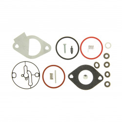 Kit carburateur (Nikki) Briggs Stratton Powerbuilt 3105 - 3125 - 3130 - 4155 - 4175