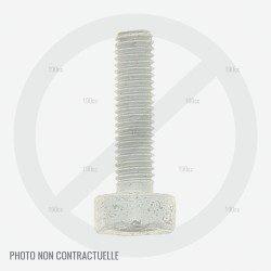 Vis M5x58 pour cylindre débroussailleuse Stihl