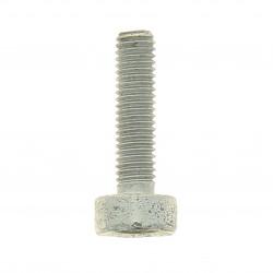 Vis cylindrique  Stihl débroussailleuse FS (DG 5x60)