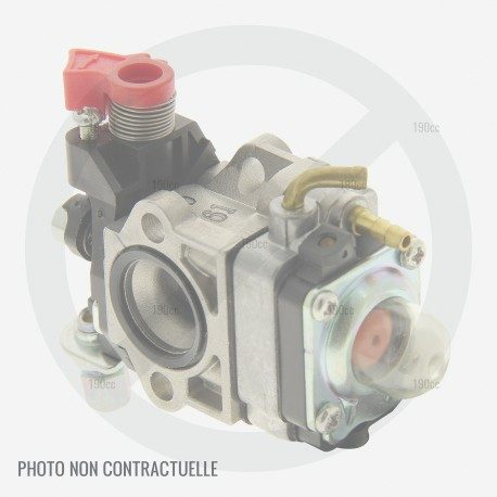 Carburateur taille haie Sandrigarden SGHT 2655