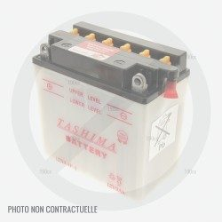 Batterie pour autoportée Mc Culloch M105-97 et M125-97