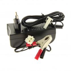 Chargeur de batterie pour autoportée GGP