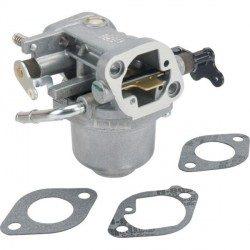 Carburateur Briggs Stratton Intek 7160 / 7180, Intek 18,0 OHV, Intek 16,0