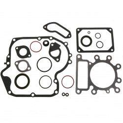 Pochette joint moteur Briggs Stratton Powerbuilt 3105 - 3115 - 3125 - 3130