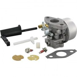 Carburateur Briggs and Stratton 800 Series