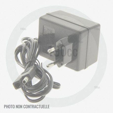 chargeur batterie viking ma 339 1 c ma 443 1 ma 443 1 c 190cc. Black Bedroom Furniture Sets. Home Design Ideas