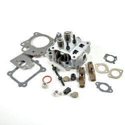 Culasse moteur Briggs Stratton 850E Series
