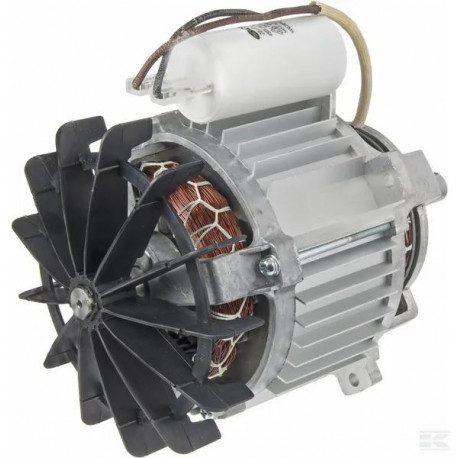 Moteur GGP 118563719/0 pour tondeuse à gazon electrique 1600 W